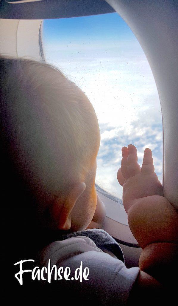 Baby im Flugzeug guckt aus Fenster