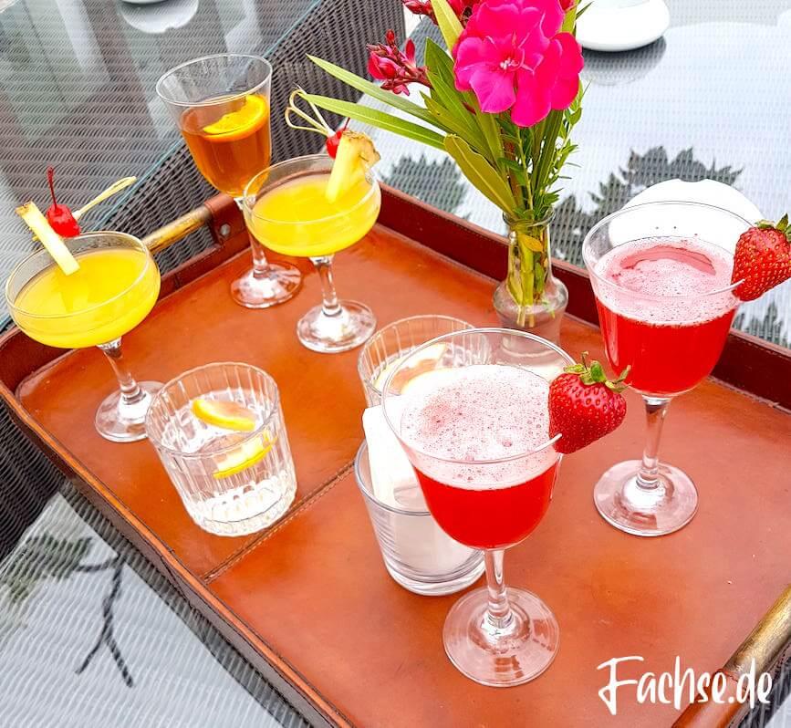 Cocktails Drinks Urlaub