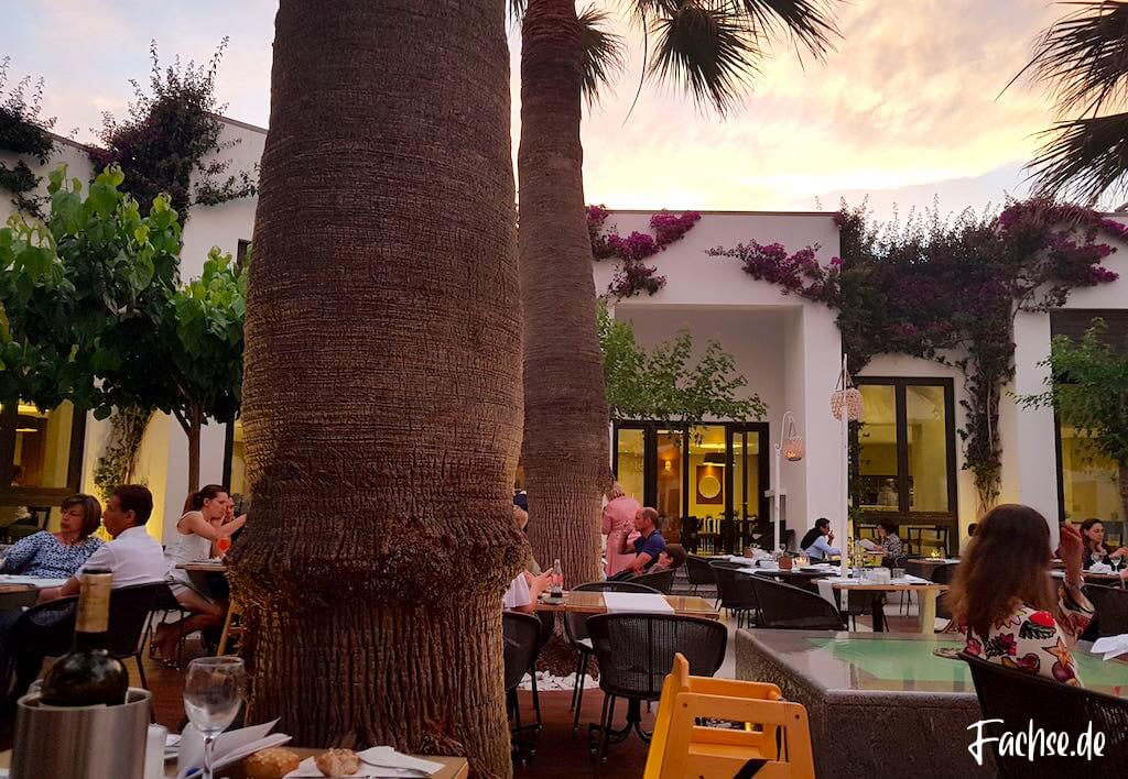 Restaurant Sonnenuntergang Palmen