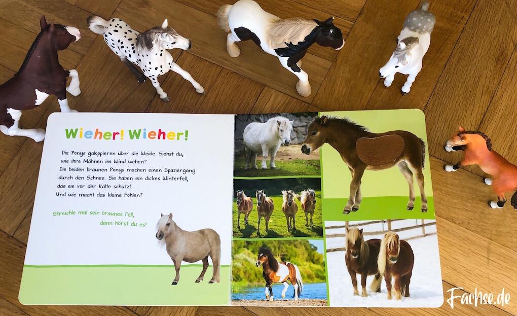 Kinderbuch Junge Kleinkind Schleich Pferd Pferde